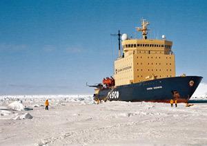 Turistas en la Antartida