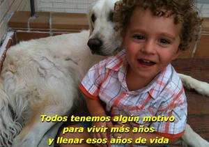 blog_felicidad_martos