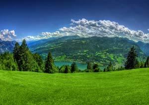 Un verde prado con una montañas de fondo