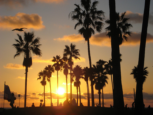 Las doradas playas de un atardecer en California