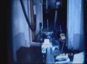 video_fukushima