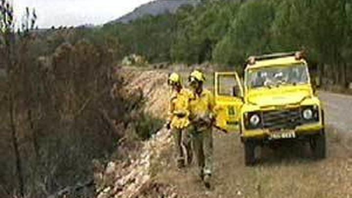 El Gobierno balear da por controlado el incendio de Ibiza