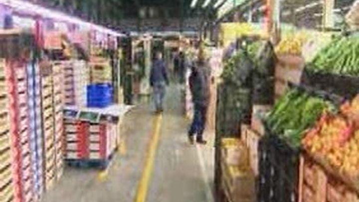 En Mercamadrid el precio del pepino ha bajado a la mitad