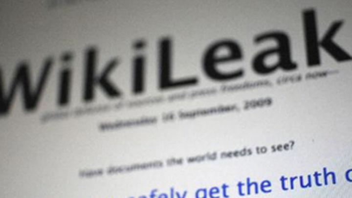 WikiLeaks se colapsa por un supuesto ciberataque