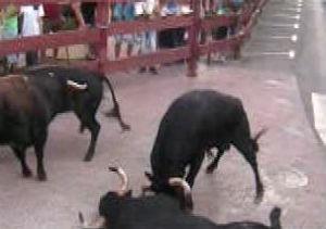 Un toro muere tras chocar con otro en el segundo encierro de Leganés