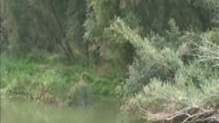 La niña de 10 meses ahogada este martes en el Ebro en Logroño fue sumergida por su padrastro