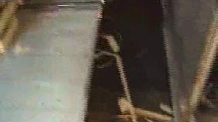 Los fruteros denuncian falta de vigilancia y limipieza en Mercamadrid
