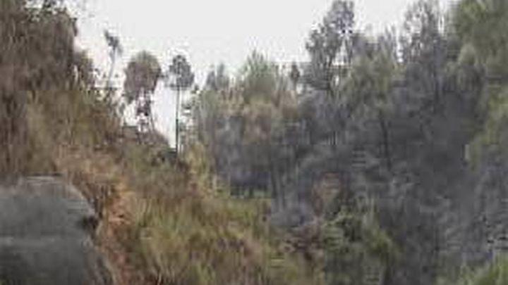 El incendio de Mijas (Málaga) afecta a 361 hectáreas  forestales y a 323 en suelo urbano
