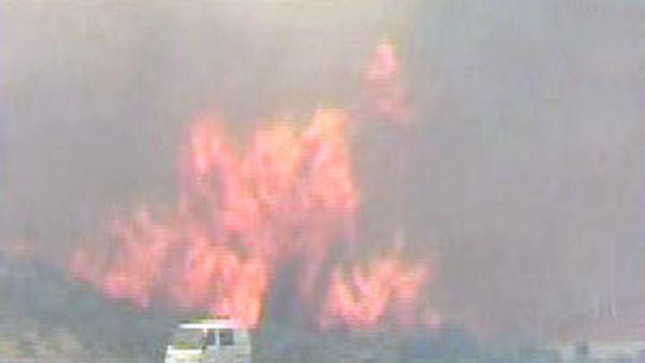 Un incendio forestal arrasa Australia