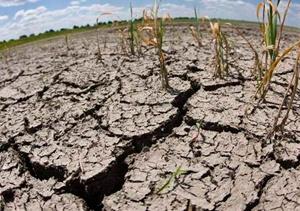 Sequía en Madrid