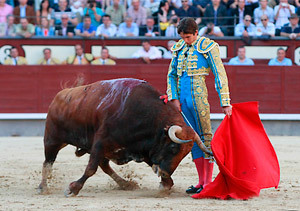 Sebastián Castella da un trincherazo a un toro de Núñez del Cuvillo en la feria de San Isidro 2012