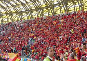 Aficionados Eurocopa