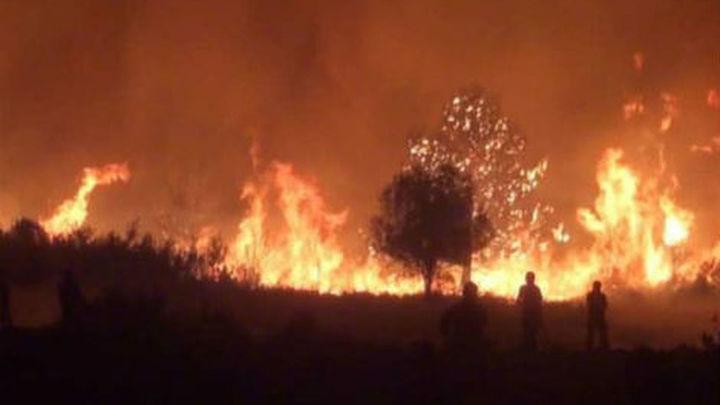 """Cañete: 2012 es """"el peor"""" año, con más de 165.000 hectáreas arrasadas por el fuego"""