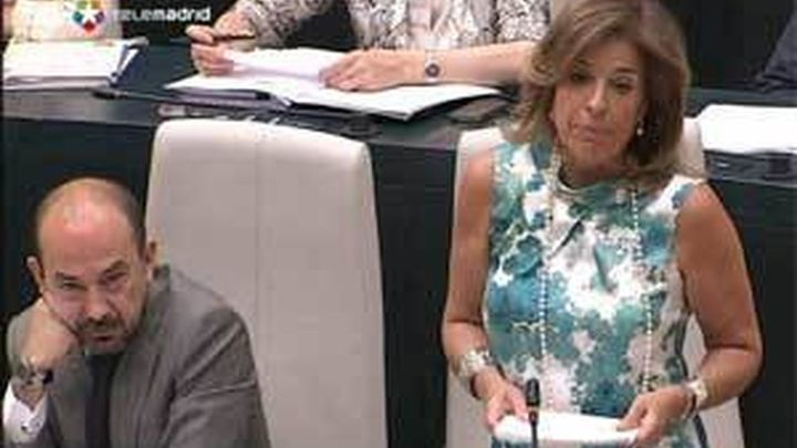 El Ayuntamiento de Madrid pide una tasa por el uso lucrativo del espacio público