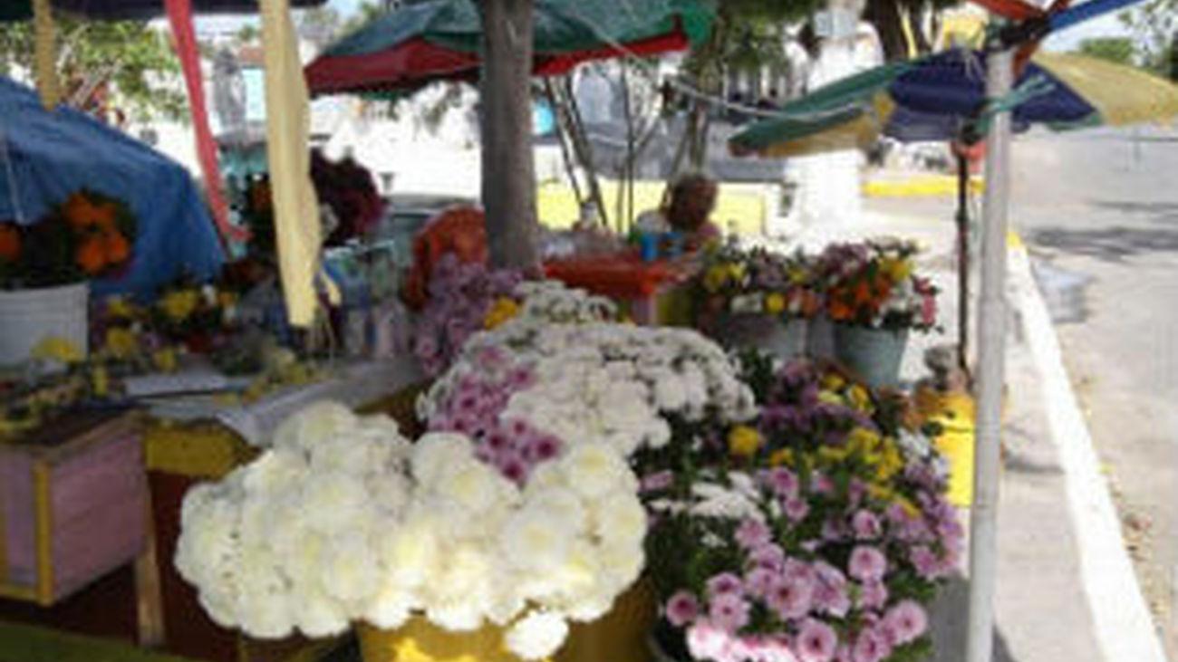 Los comerciantes piden controles que detecten la venta ilegal de flores