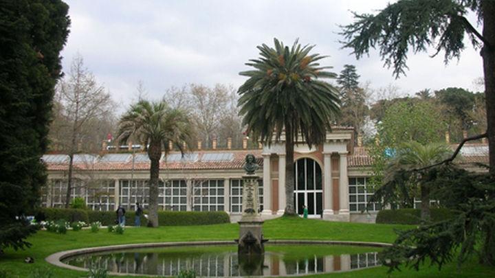 El Real Jardín Botánico lanza la aplicación móvil para Android