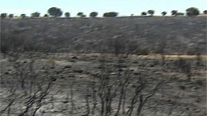 Controlado el incendio de Campo Real