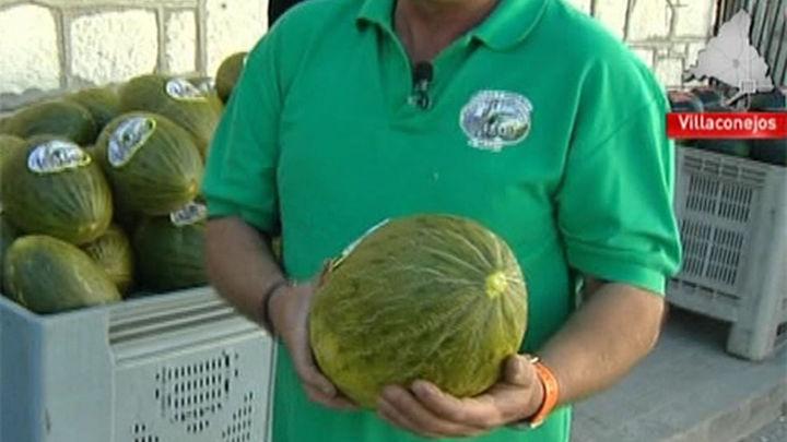 La fama del melón de Villaconejos