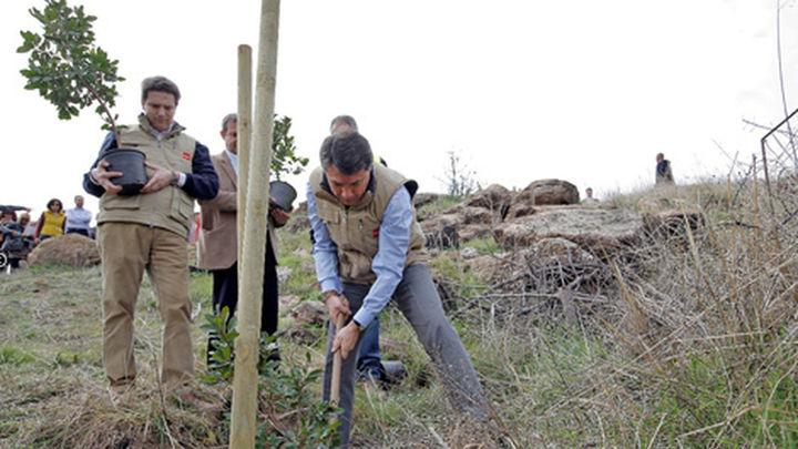La zona del incendio de Robledo se reforestará con 260.000 árboles