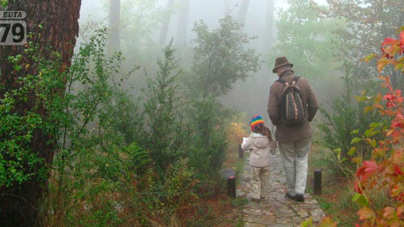 El Escorial y San Lorenzo: Arboreto Luis Ceballos