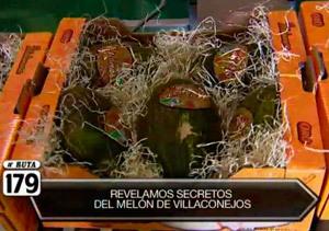 Villaconejos, tierra de melones