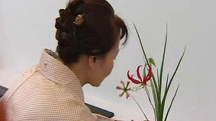 Aprender Ikebana, el arte floral japonés, en el Botánico
