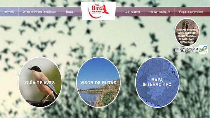 Una página web informa sobre las aves y las rutas para avistarlas en Madrid