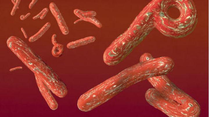 Unos desconocidos amenazan con extender el virus del ébola por la R. Checa