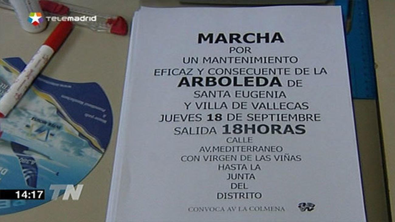 Vecinos de Vallecas exigen al Ayuntamiento el mantenimiento del arbolado