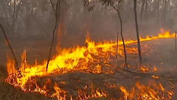 Los incendios destruyen 12.000 hectáreas en el sur de Australia