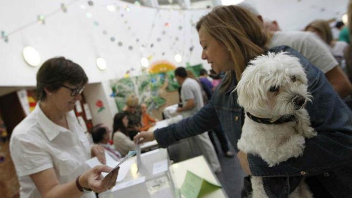 """El Gobierno dice que es un """"buen momento"""" para plantear la reforma electoral"""