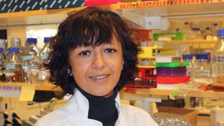 Las bioquímicas Charpentier y Doudna, Premio Princesa de Investigación 2015