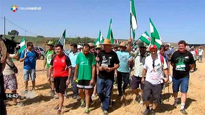Militantes del SAT se concentran ante la finca 'La Isla' aunque no la ocupan