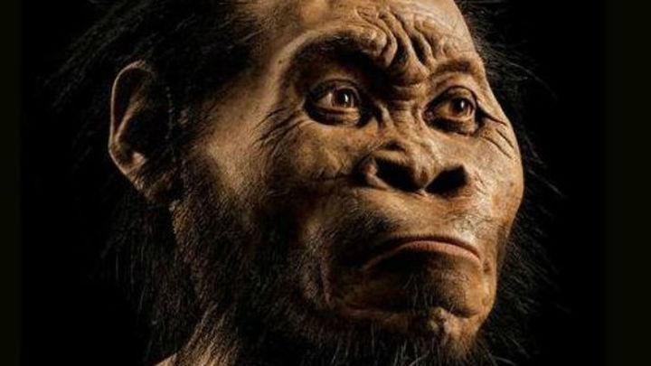 Científicos descubren en África un nuevo ancestro humano, el Homo Nadeli