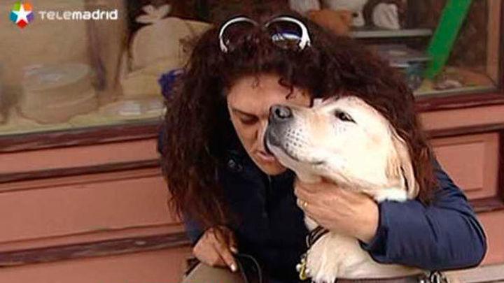 Una mujer ciega denuncia agresiones por acceder con su perro guía a una tienda