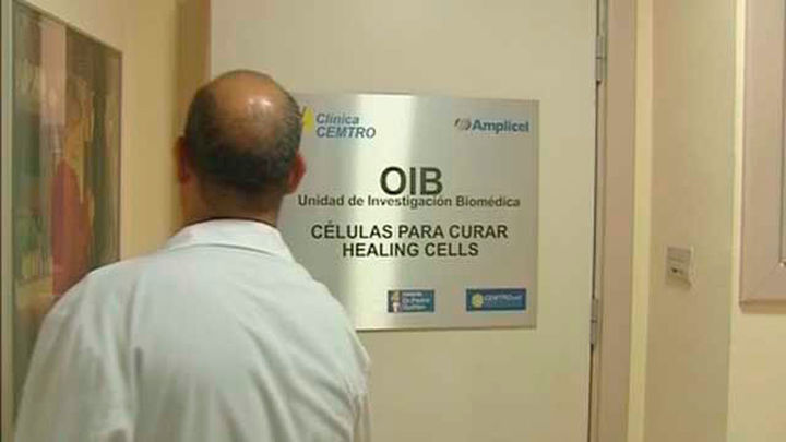 Un paso más hacia la posibilidad de crear riñones trasplantables