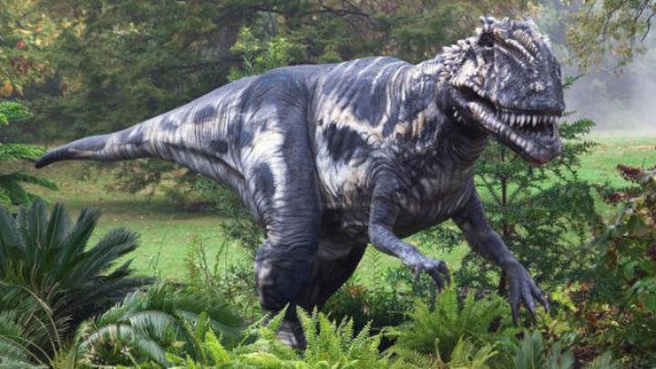 Una de las mayores huellas de dinosaurio del mundo, en el desierto del Gobi