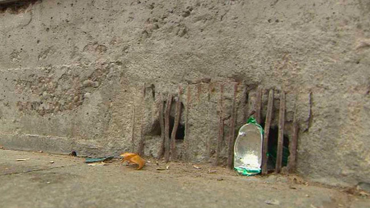 Plaga de ratas y chinches en Alcalá de Henares
