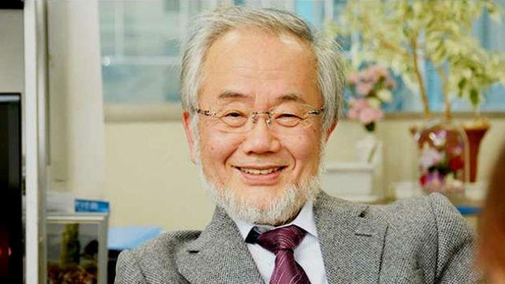 Yoshinori Ohsumi, galardonado con el Nobel de Medicina 2016