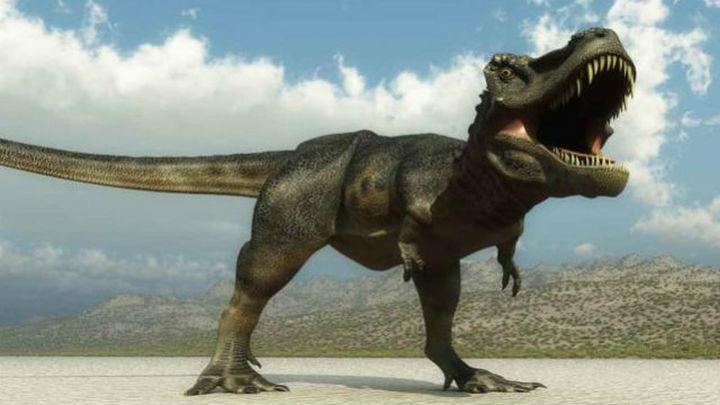 Los dinosaurios surgieron 20 millones de años antes de lo verificado