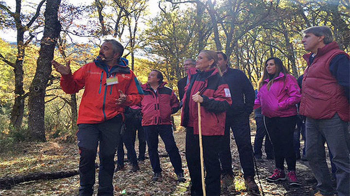 La Comunidad quiere que el Hayedo de Montejo sea declarado Patrimonio Natural de la Humanidad