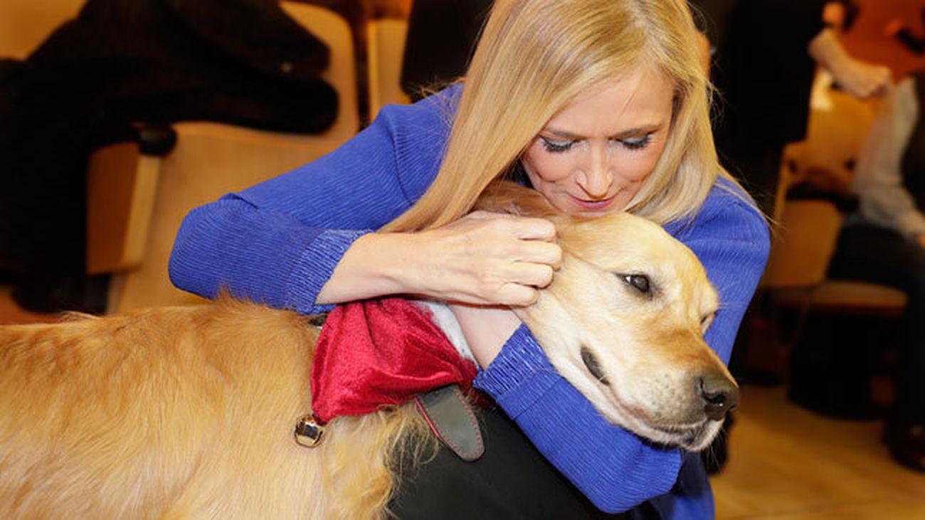 Cifuentes anima a adoptar a los perros policía  'jubilados'