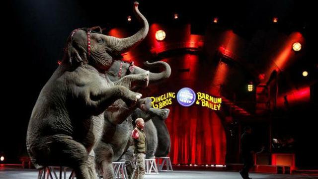 El circo Barnum echa el cierre