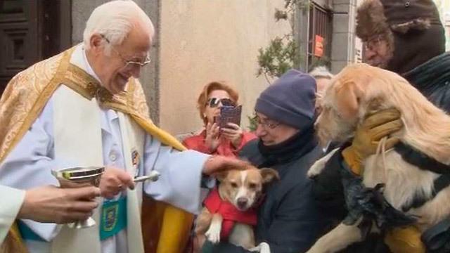 La bendición de San Antón