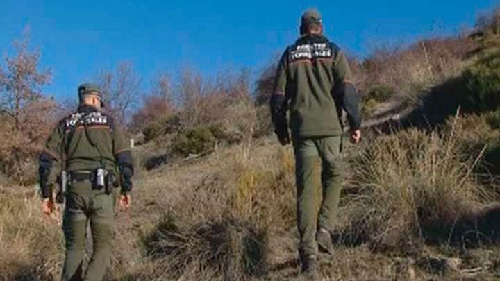 Los agentes forestales estudian técnicas forenses sobre animales