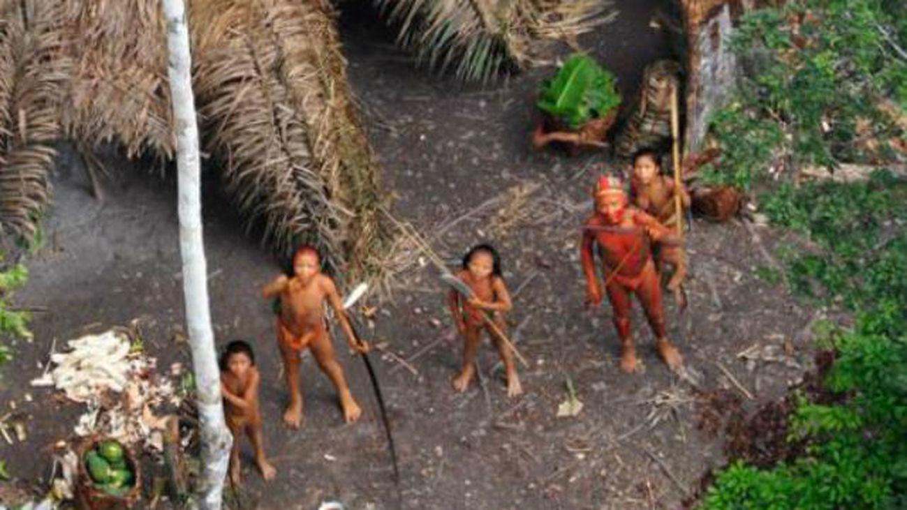 Pueblos antiguos formaron la selva amazónica