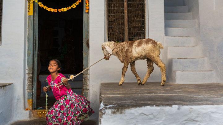 Cristina García Rodero retrata la India rural y olvidada