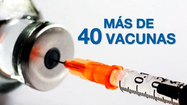 La vacunación: una prioridad sanitaria