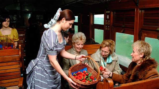 Un momento del viaje en el histórico Tren de la Fresa