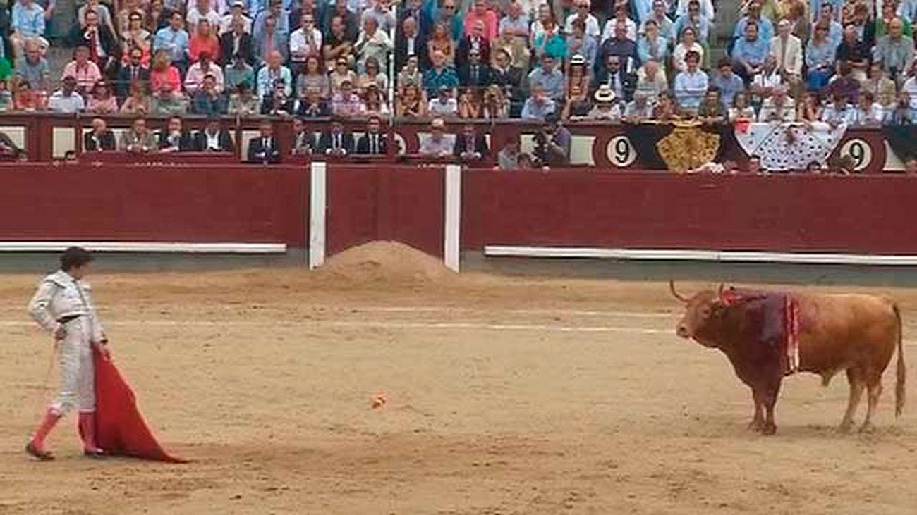 Premios taurinos de Telemadrid: Juan del Álamo, mejor torero y Hebreo de Jandilla, mejor toro